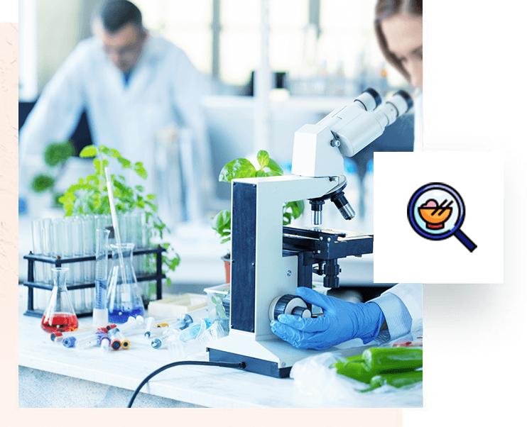 Bureau d'étude en ingénierie agroalimentaire